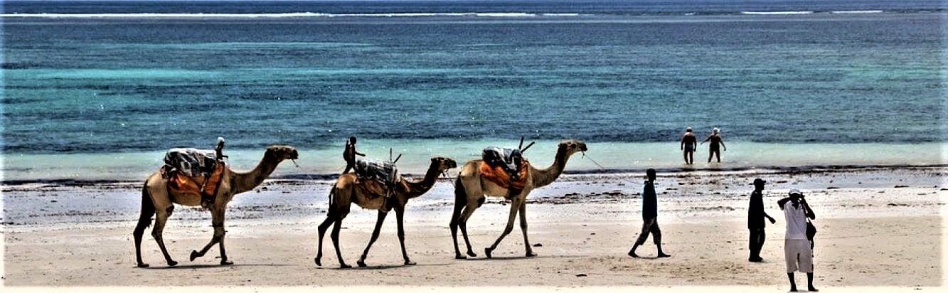 Diani Beach in Kenya