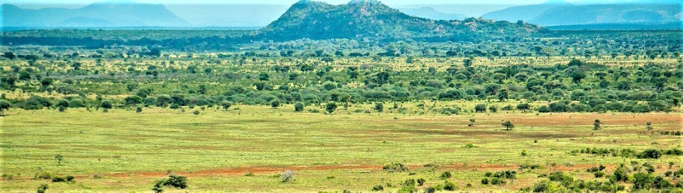Meru National Park